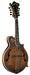 Washburn vintage series M118SWK Mandolin acoustic guitar